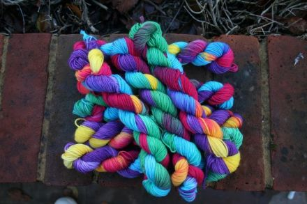 Limited Edition Merino/Nylon Mini Skein Lorakeet